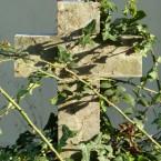 Alter-Friedhof-Saal-4-web