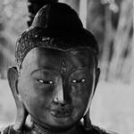 Buddha12web