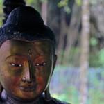 Buddha13web