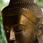 Buddha15web
