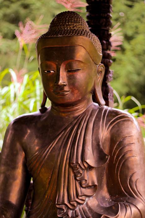 Buddha16web