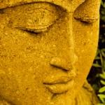 Buddha19web