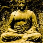 Buddha20web