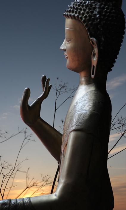 Buddha25web