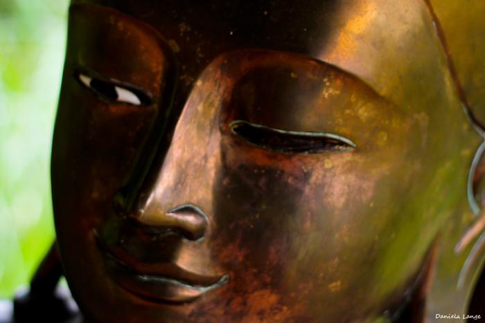 Buddha26web