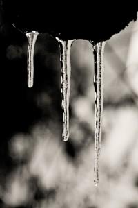 Eiszeit-2--web